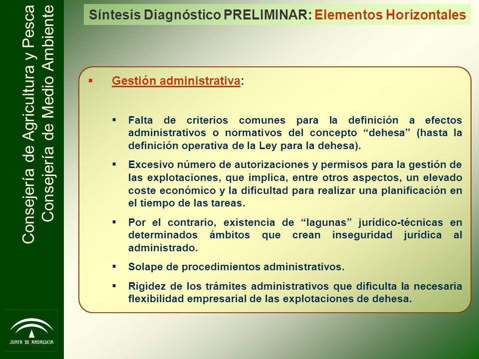 Síntesis Diagnóstico PRELIMINAR: Elementos Horizontales