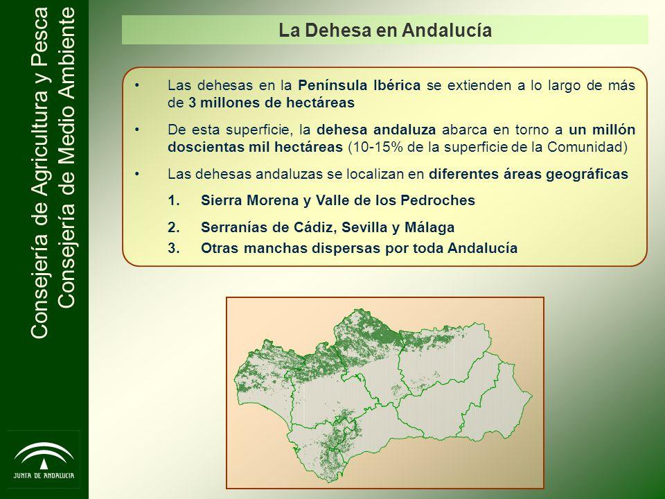 La Dehesa en Andalucía Las dehesas en la Península Ibérica se extienden a lo largo de más de 3 millones de hectáreas.