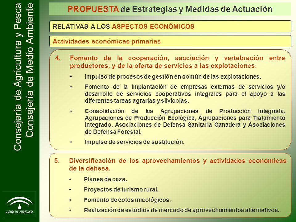 PROPUESTA de Estrategias y Medidas de Actuación
