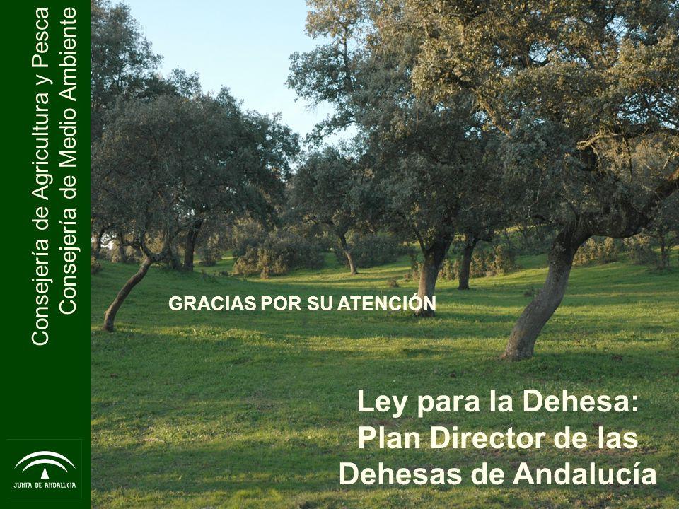 Ley para la Dehesa: Plan Director de las Dehesas de Andalucía
