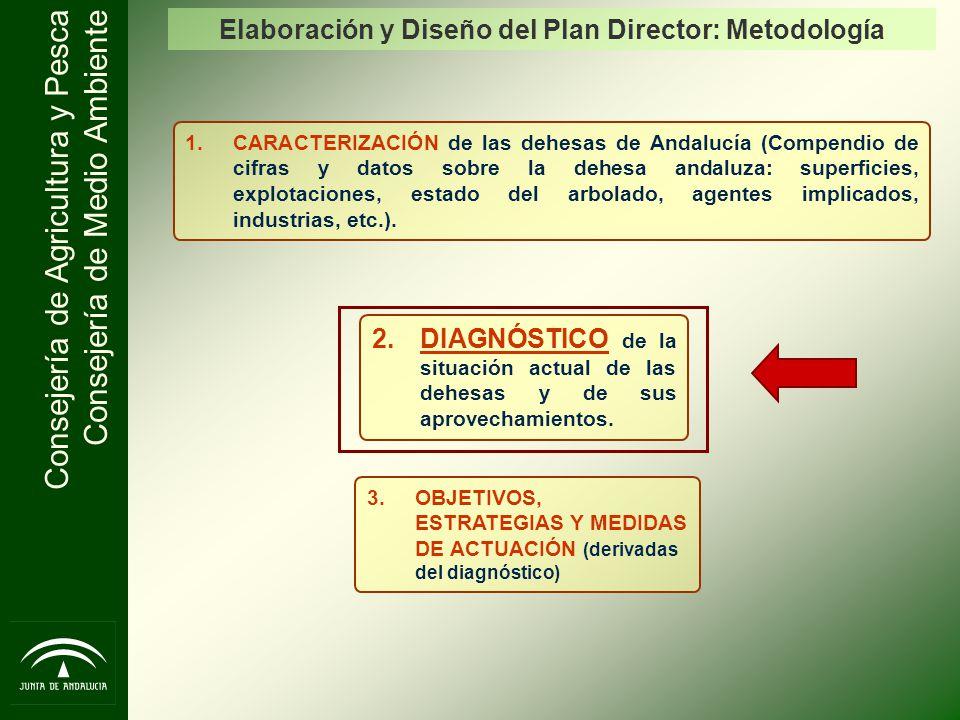 Elaboración y Diseño del Plan Director: Metodología