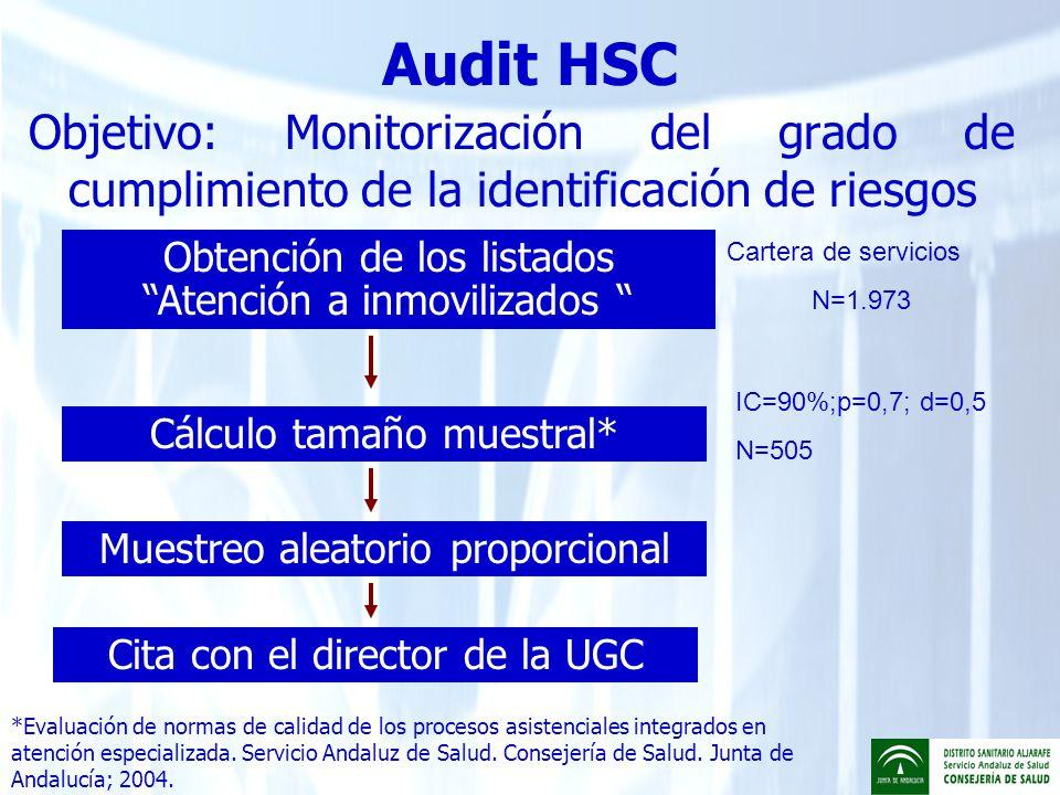 Audit HSC Objetivo: Monitorización del grado de cumplimiento de la identificación de riesgos. Obtención de los listados Atención a inmovilizados