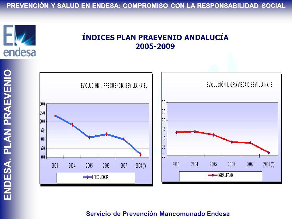 ÍNDICES PLAN PRAEVENIO 2005-2009