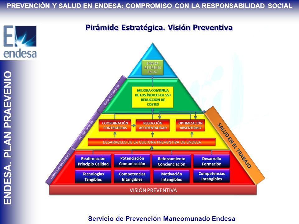 Servicio de Prevención Mancomunado Endesa
