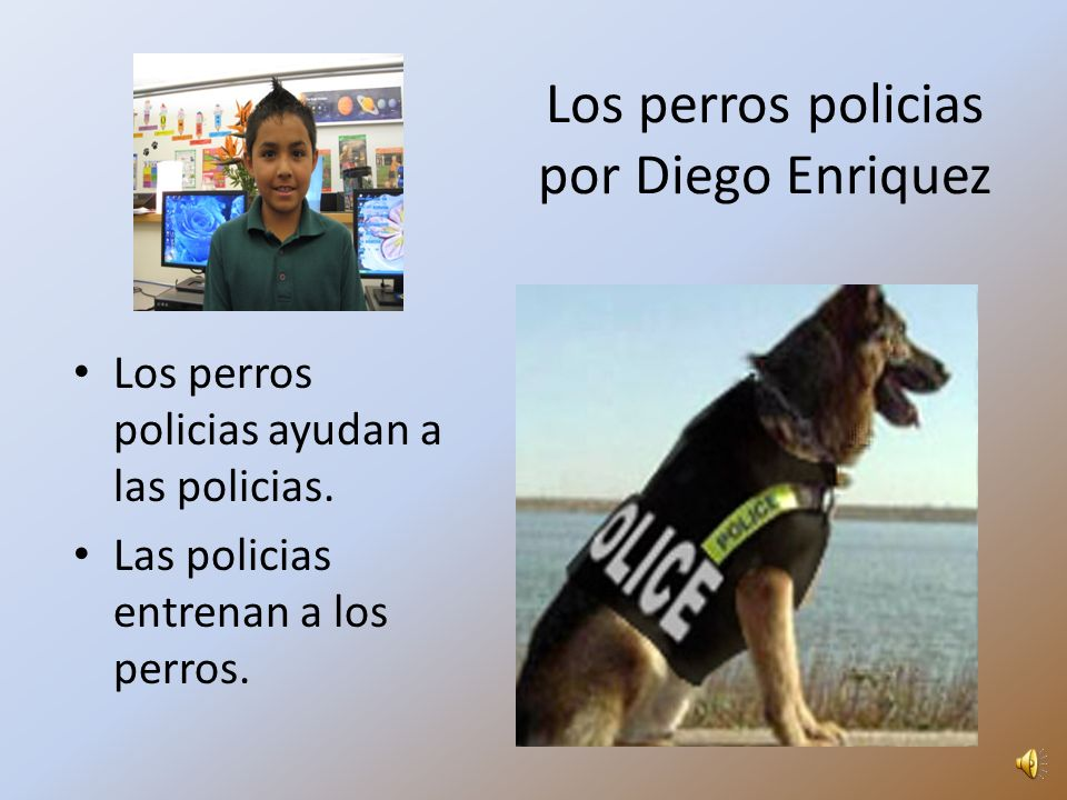 Los perros policias por Diego Enriquez