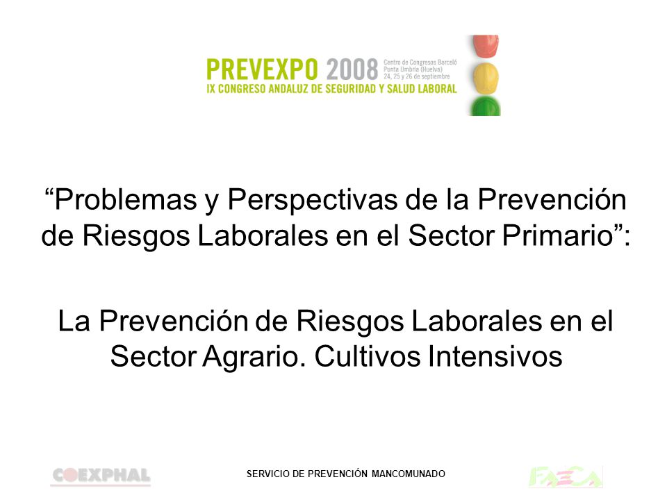 Problemas y Perspectivas de la Prevención de Riesgos Laborales en el Sector Primario :