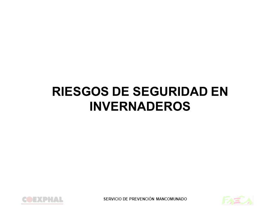 RIESGOS DE SEGURIDAD EN INVERNADEROS
