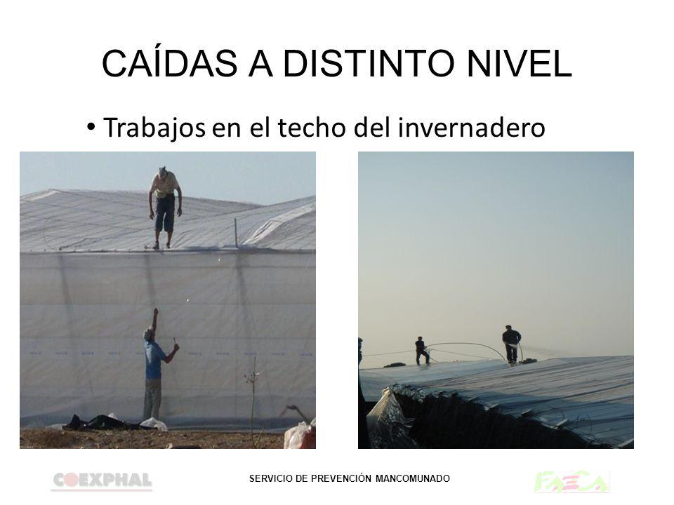 CAÍDAS A DISTINTO NIVEL