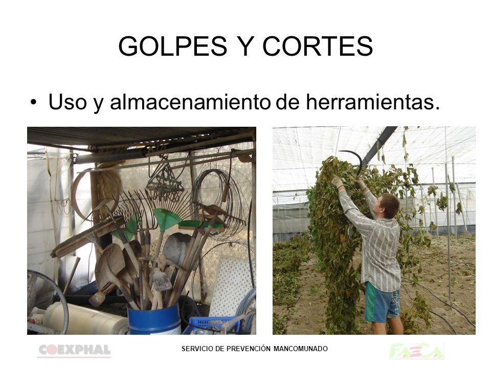 GOLPES Y CORTES Uso y almacenamiento de herramientas.