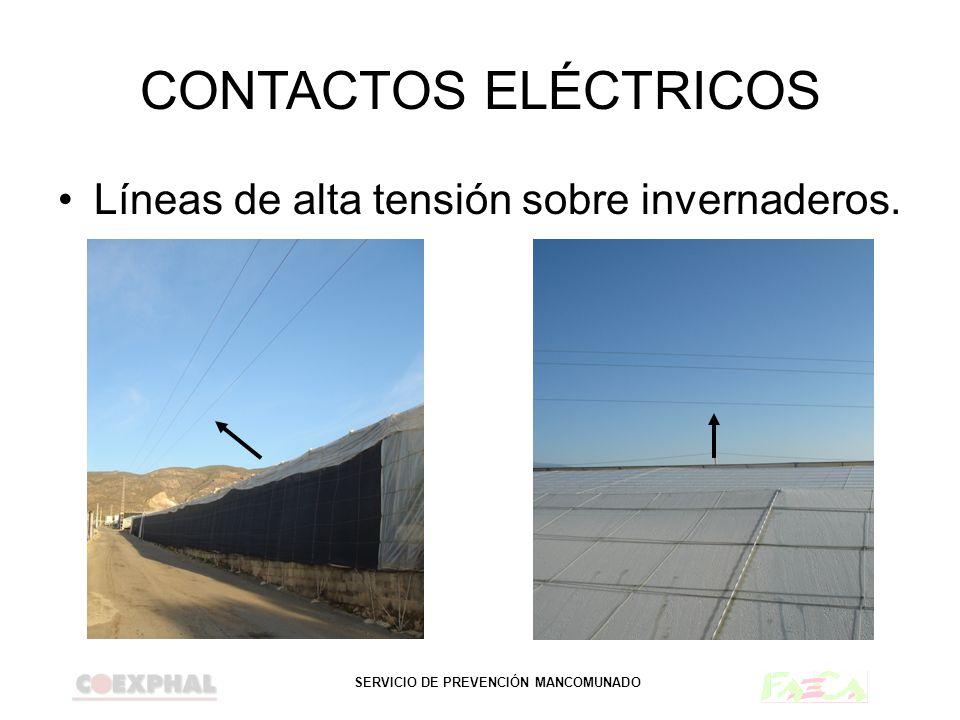 CONTACTOS ELÉCTRICOS Líneas de alta tensión sobre invernaderos.