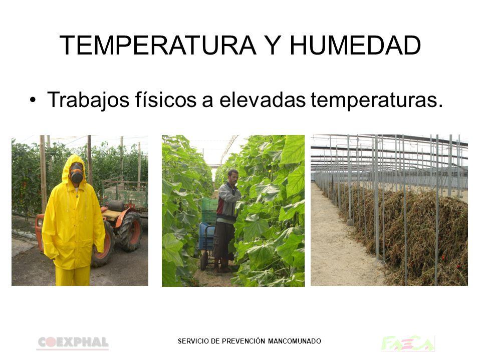 TEMPERATURA Y HUMEDAD Trabajos físicos a elevadas temperaturas.