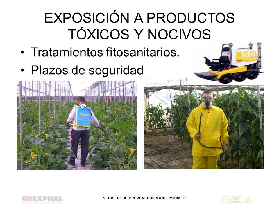 EXPOSICIÓN A PRODUCTOS TÓXICOS Y NOCIVOS