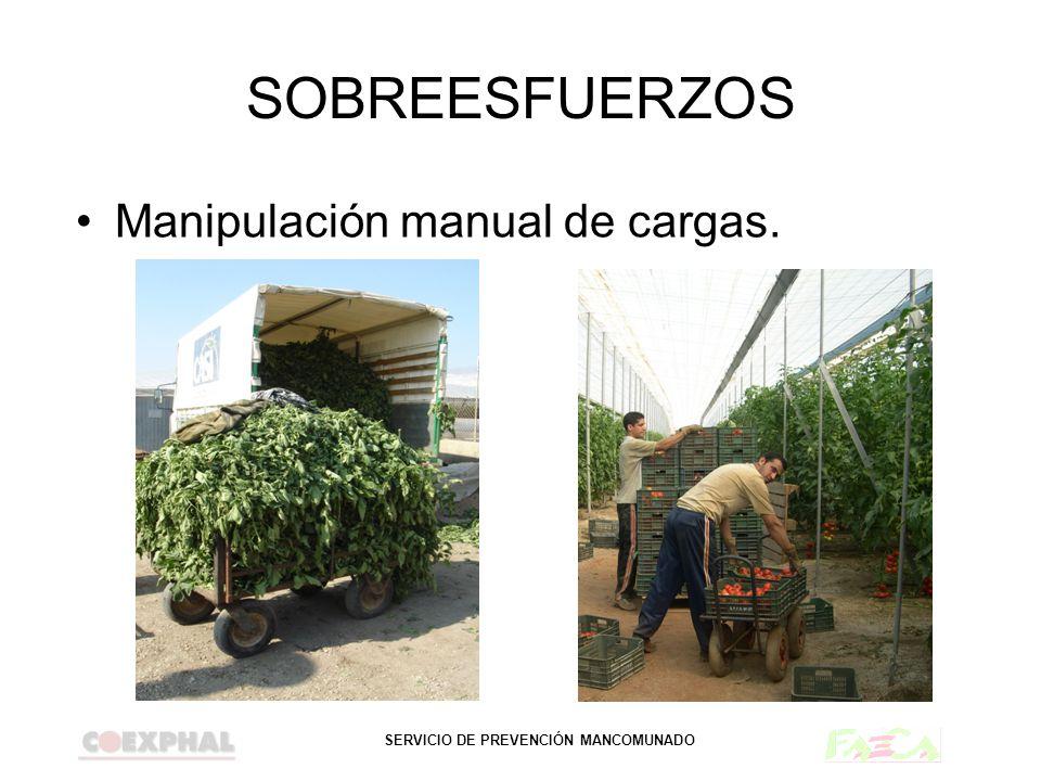 SOBREESFUERZOS Manipulación manual de cargas.