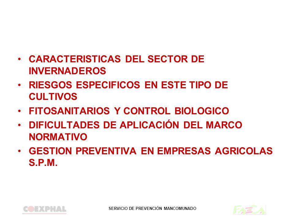 CARACTERISTICAS DEL SECTOR DE INVERNADEROS