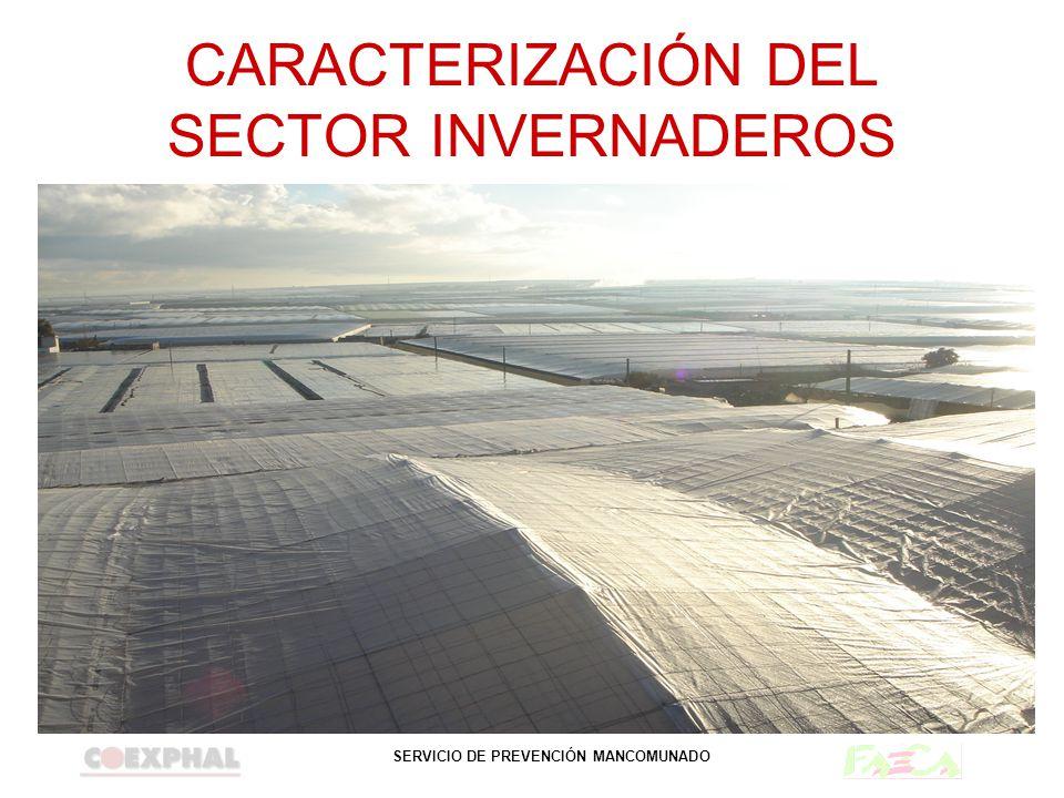 CARACTERIZACIÓN DEL SECTOR INVERNADEROS