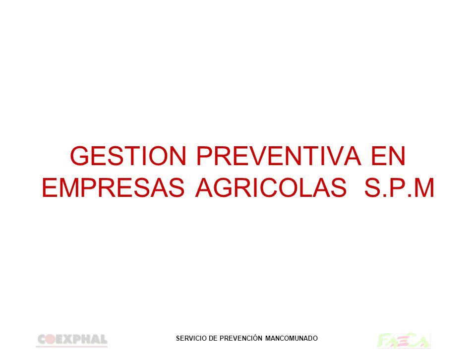GESTION PREVENTIVA EN EMPRESAS AGRICOLAS S.P.M