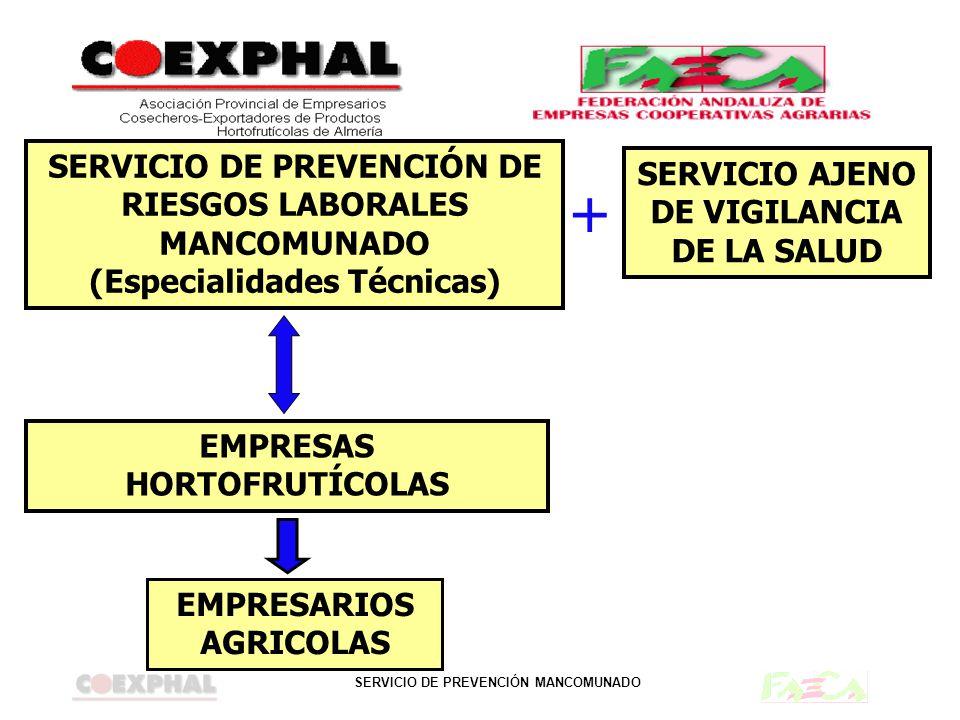 SERVICIO DE PREVENCIÓN DE RIESGOS LABORALES MANCOMUNADO (Especialidades Técnicas)