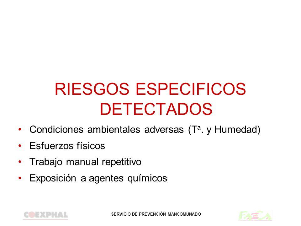 RIESGOS ESPECIFICOS DETECTADOS