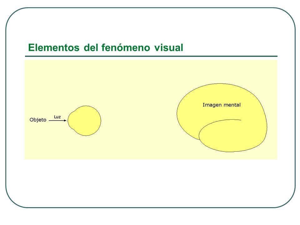 Elementos del fenómeno visual