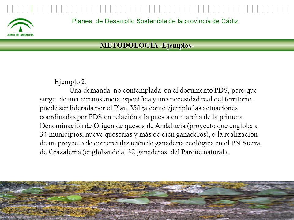 METODOLOGÍA -Ejemplos-