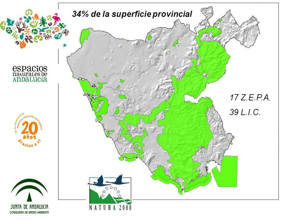 34% de la superficie provincial