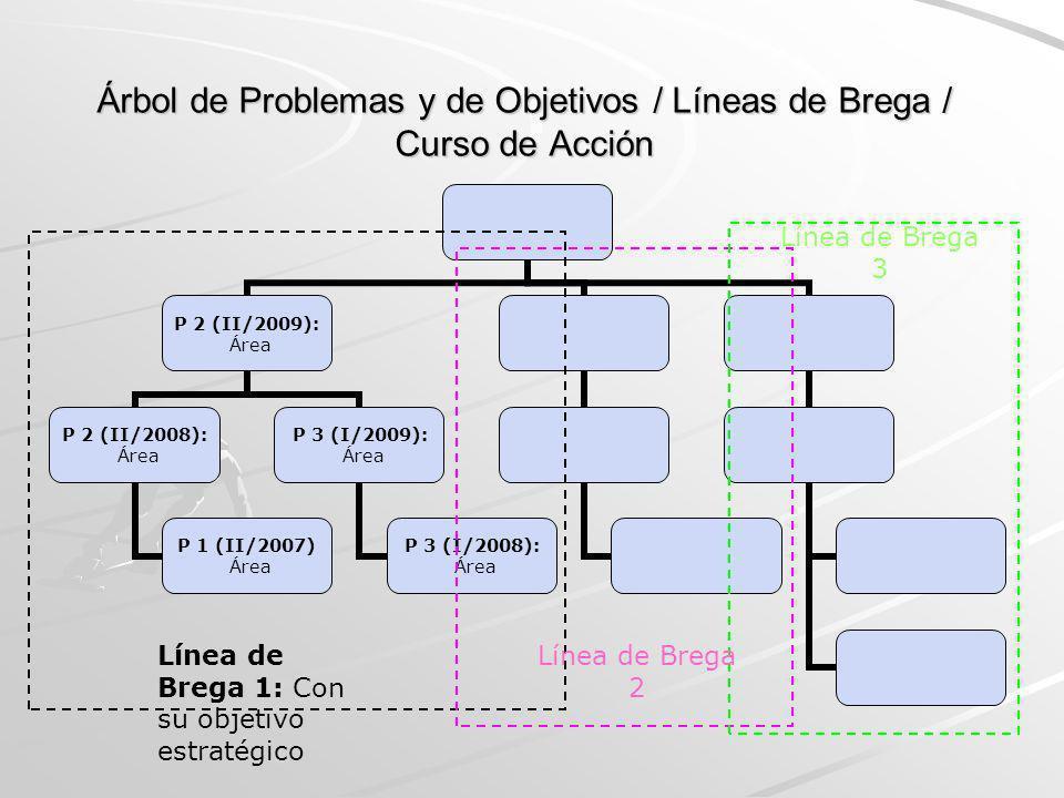 Árbol de Problemas y de Objetivos / Líneas de Brega / Curso de Acción