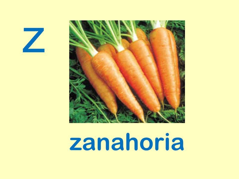 z zanahoria