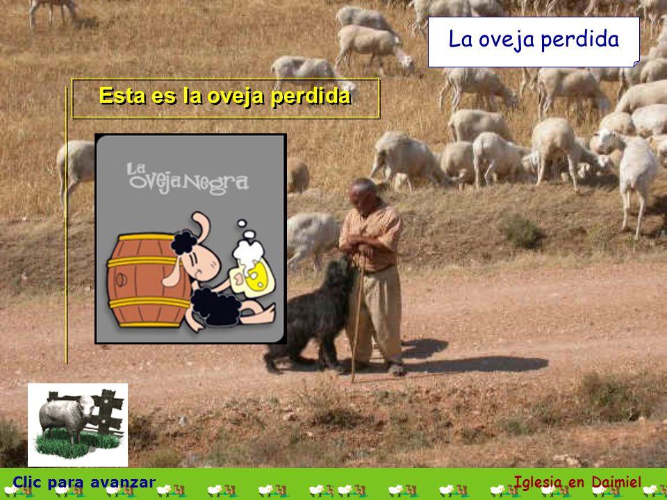 Esta es la oveja perdida