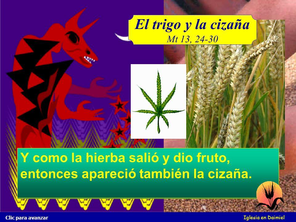 El trigo y la cizaña Mt 13, 24-30. Mas durmiendo los hombres, vino su enemigo, y sembró cizaña entre el trigo, y se fue.