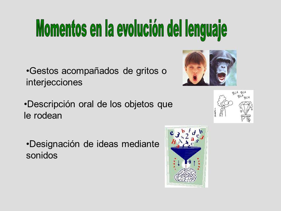 Momentos en la evolución del lenguaje