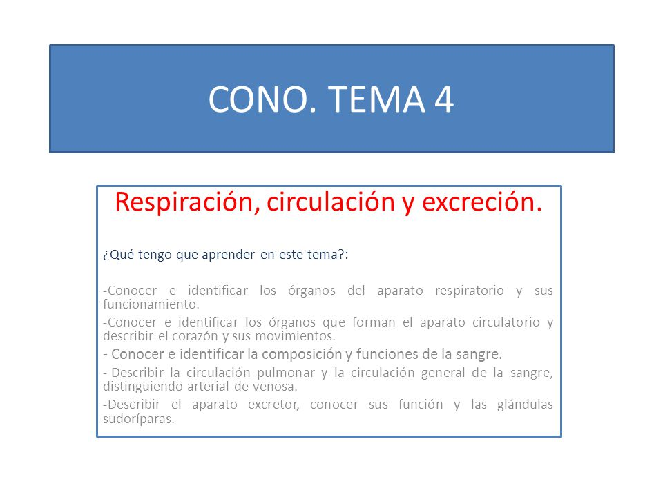 Respiración, circulación y excreción.