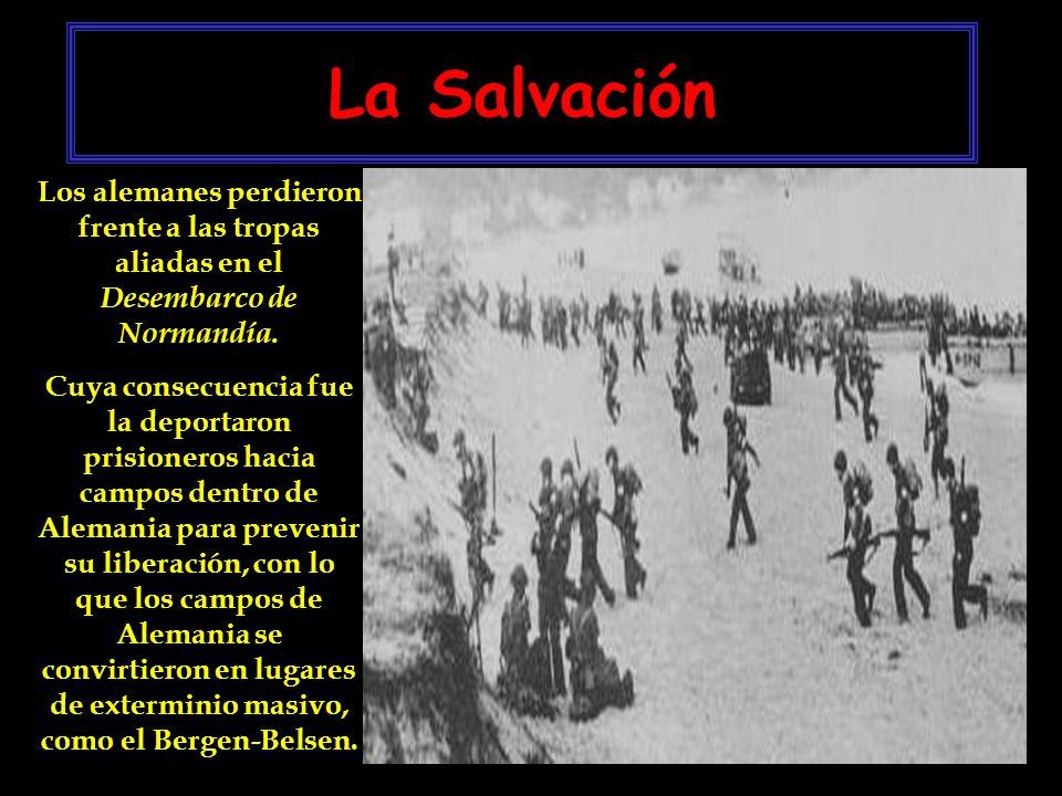 La Salvación Los alemanes perdieron frente a las tropas aliadas en el Desembarco de Normandía.