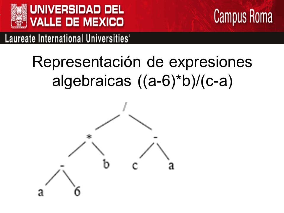 Representación de expresiones algebraicas ((a-6)*b)/(c-a)