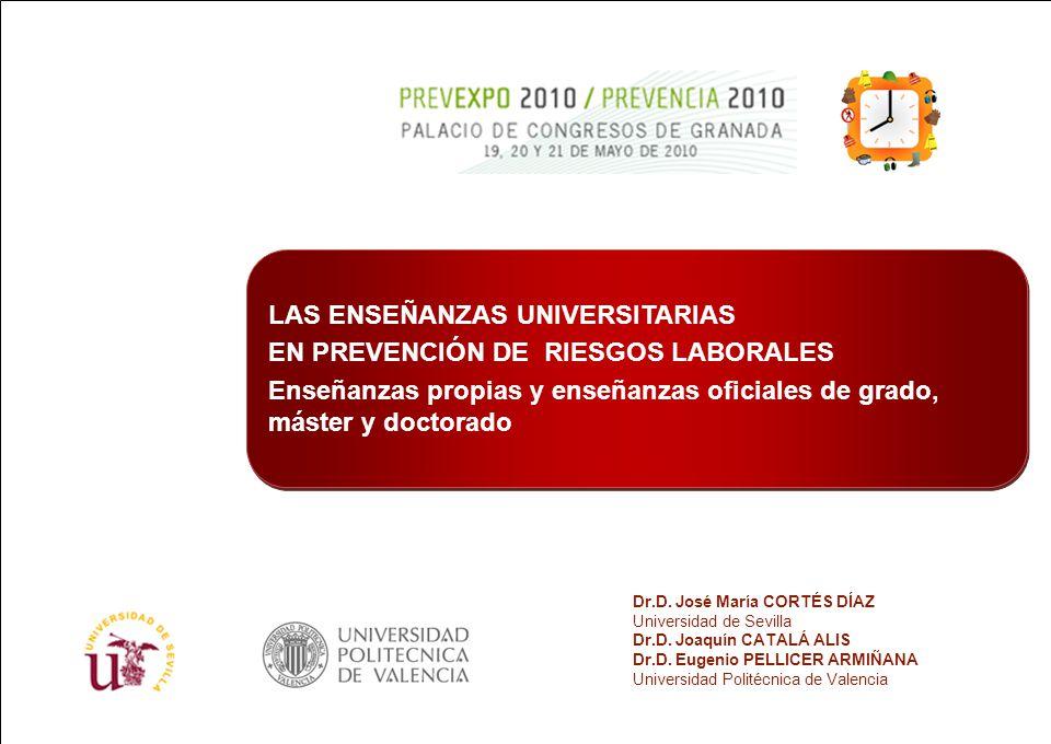 LAS ENSEÑANZAS UNIVERSITARIAS EN PREVENCIÓN DE RIESGOS LABORALES