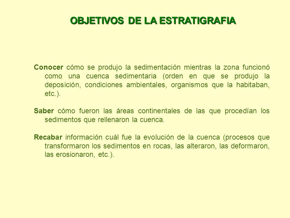 OBJETIVOS DE LA ESTRATIGRAFIA