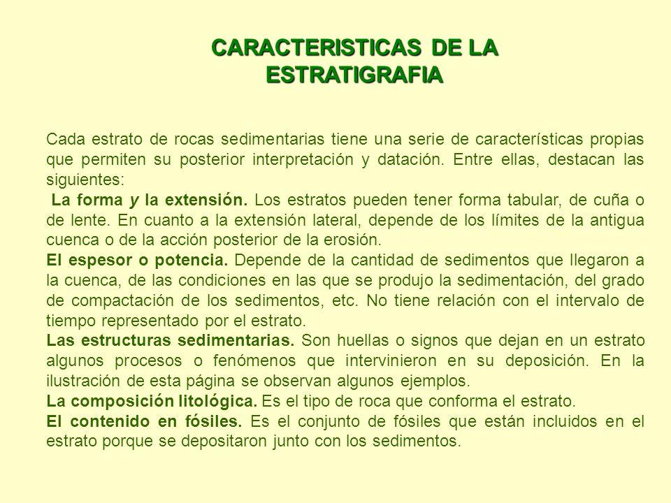 CARACTERISTICAS DE LA ESTRATIGRAFIA
