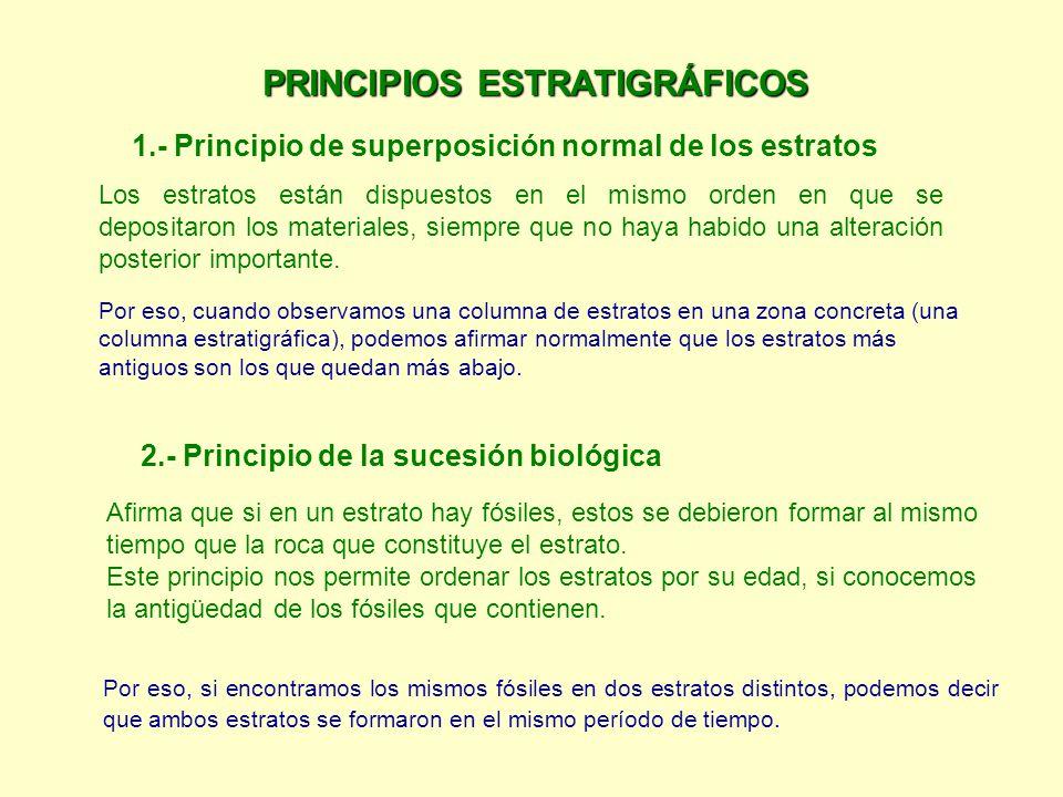 PRINCIPIOS ESTRATIGRÁFICOS