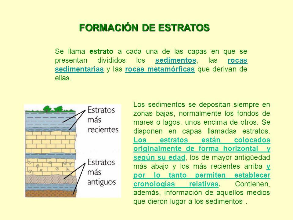 FORMACIÓN DE ESTRATOS