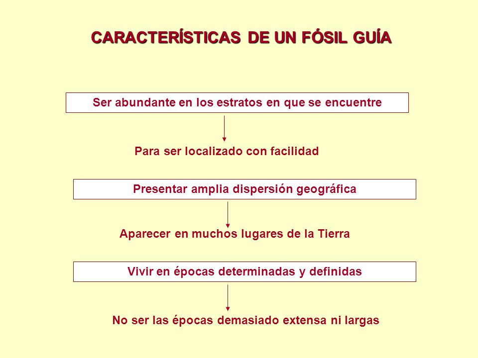 CARACTERÍSTICAS DE UN FÓSIL GUÍA