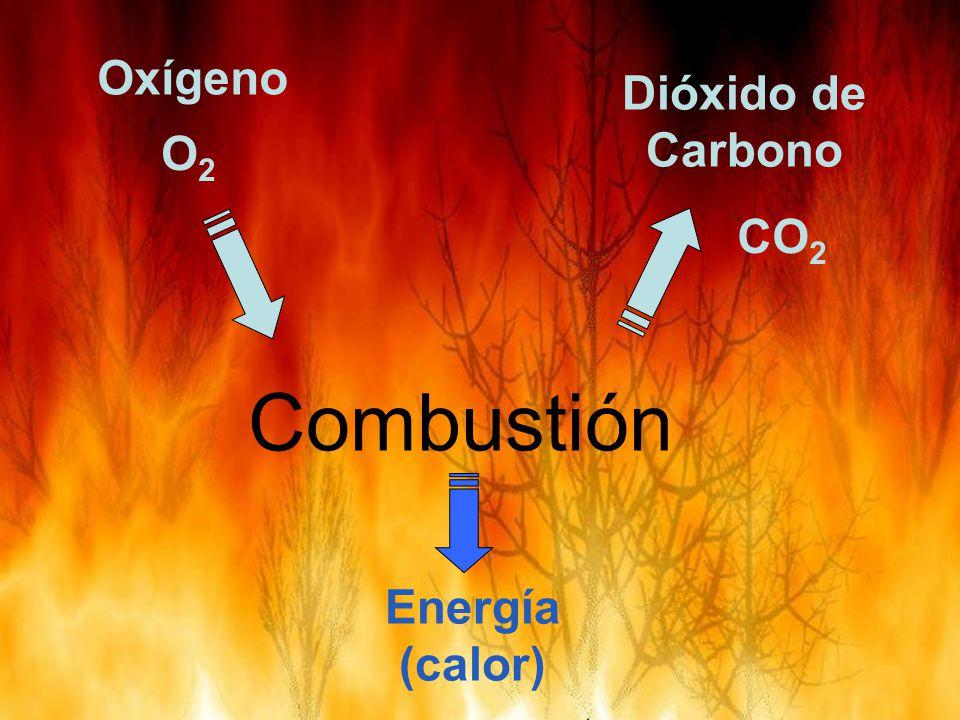 Oxígeno Dióxido de Carbono O2 CO2 Combustión Energía (calor)