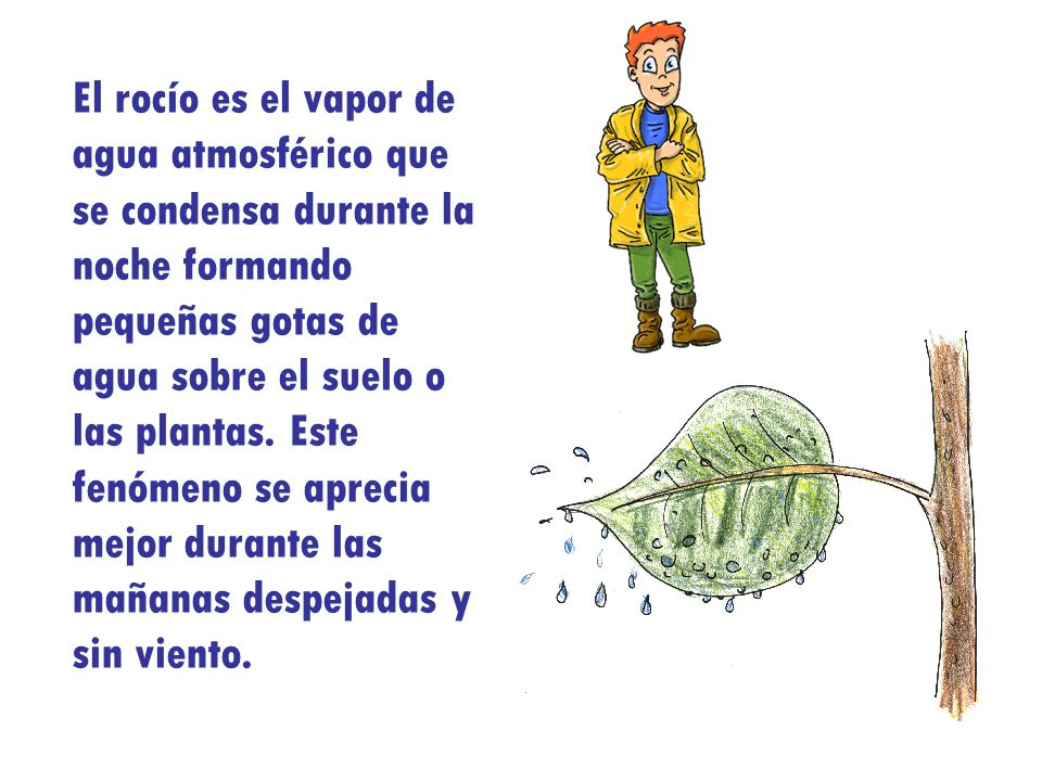 El rocío es el vapor de agua atmosférico que se condensa durante la noche formando pequeñas gotas de agua sobre el suelo o las plantas.