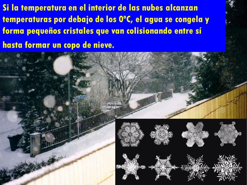 Si la temperatura en el interior de las nubes alcanzan temperaturas por debajo de los 0ºC, el agua se congela y forma pequeños cristales que van colisionando entre sí hasta formar un copo de nieve.