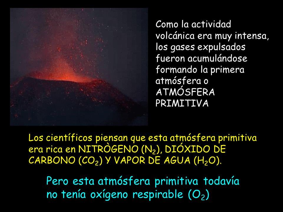 Pero esta atmósfera primitiva todavía no tenía oxígeno respirable (O2)