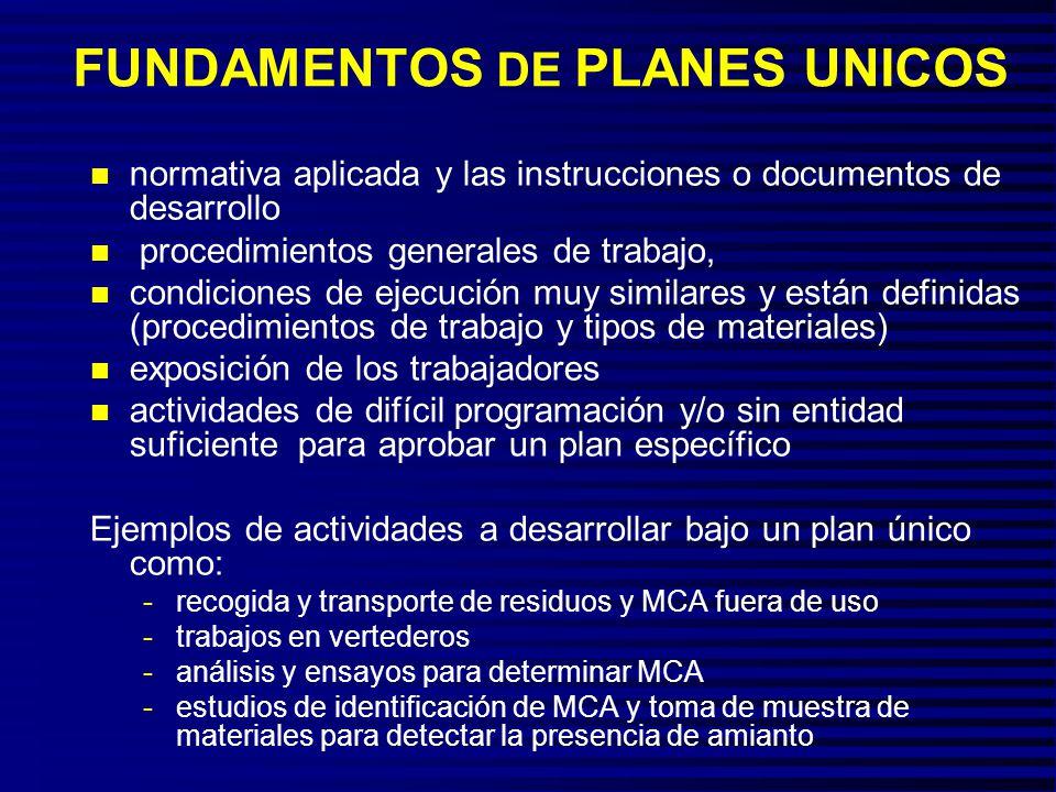 FUNDAMENTOS DE PLANES UNICOS