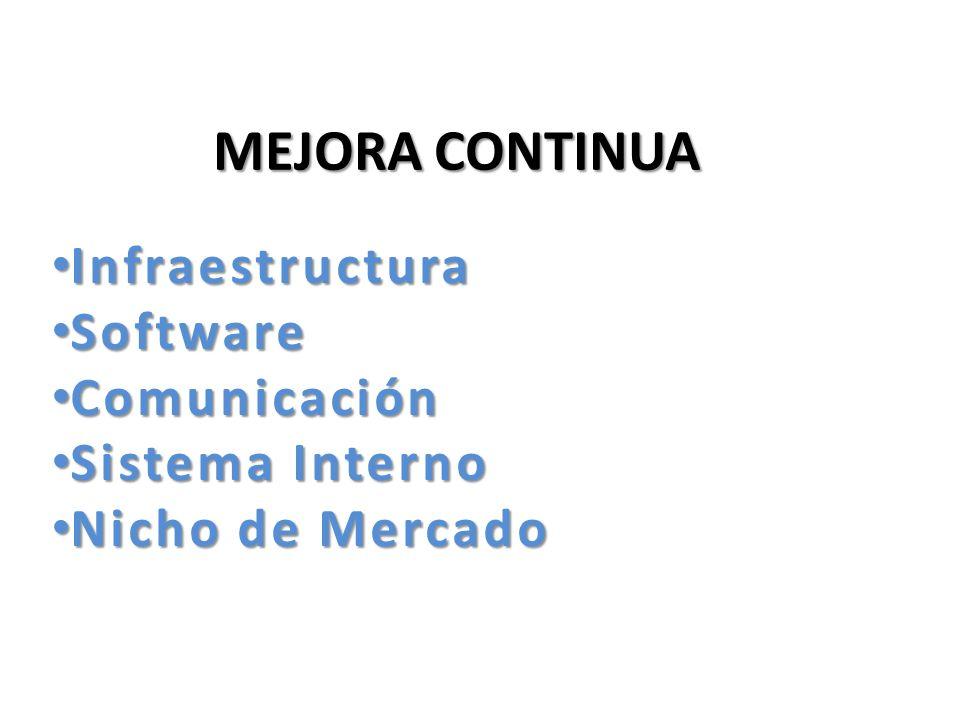 Infraestructura Software Comunicación Sistema Interno Nicho de Mercado
