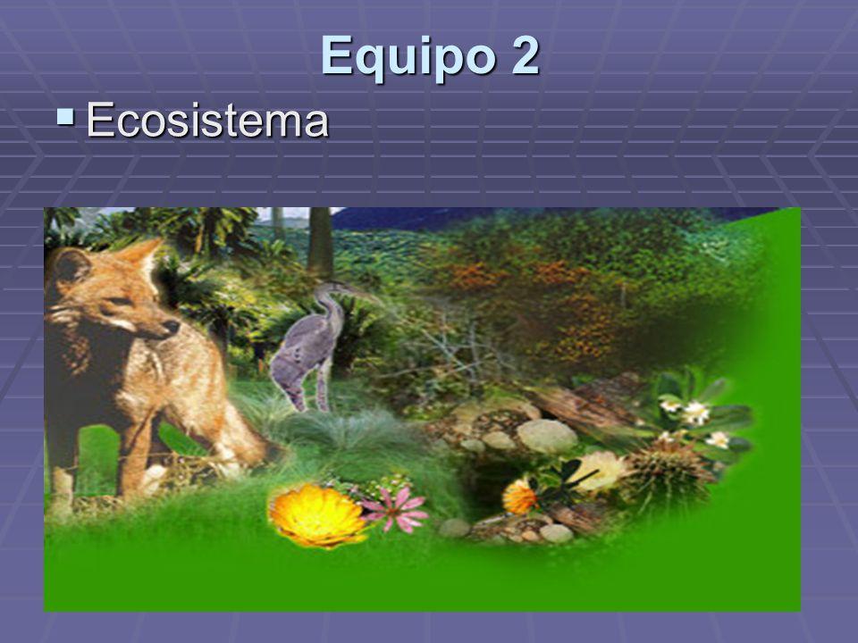 Equipo 2 Ecosistema
