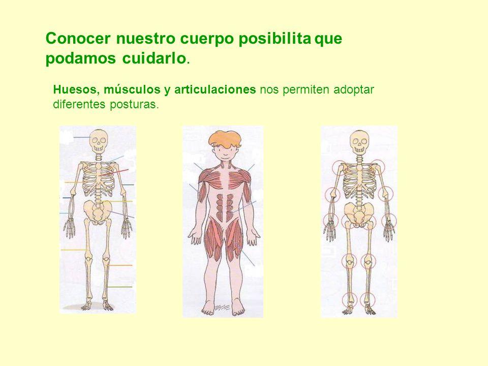 Conocer nuestro cuerpo posibilita que podamos cuidarlo.