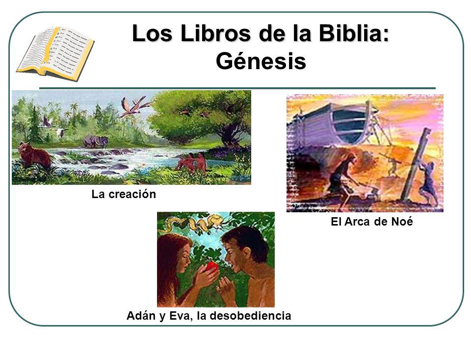 Los Libros de la Biblia: Génesis