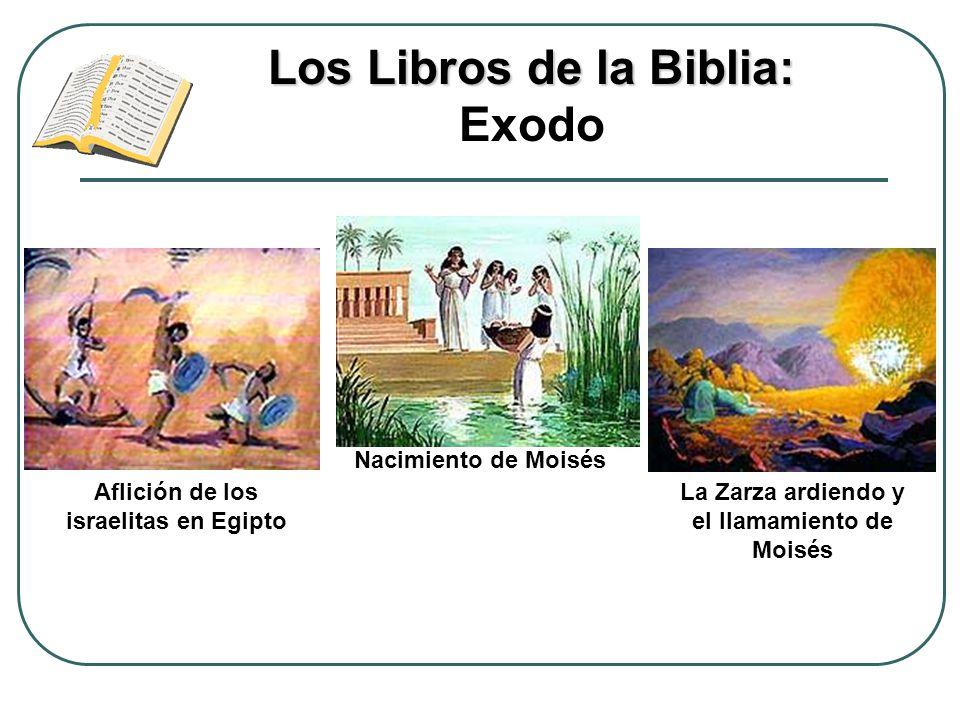 Los Libros de la Biblia: Exodo