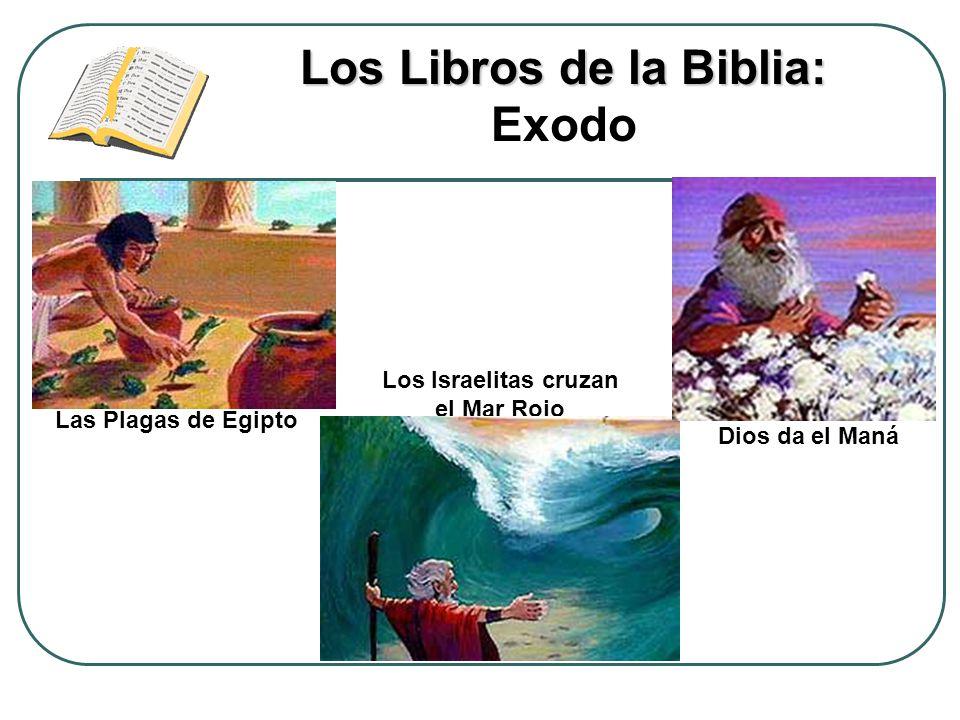 Los Libros de la Biblia: Exodo Los Israelitas cruzan el Mar Rojo